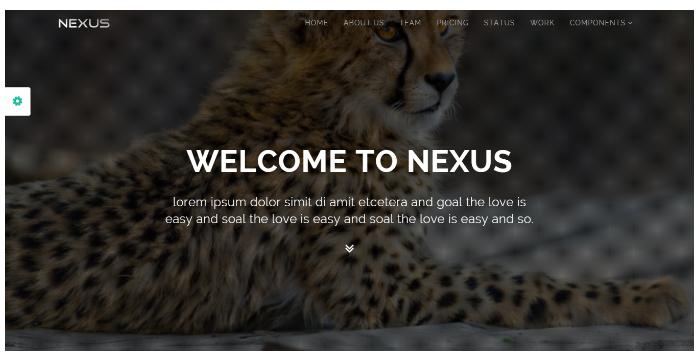 Bootstrap360_nexus