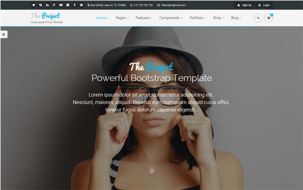 Bootstrap template The Project - Multipurpose Template